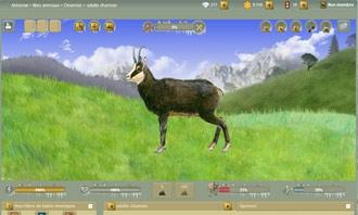 Anisnow - Il tuo nuovo animale di montagna